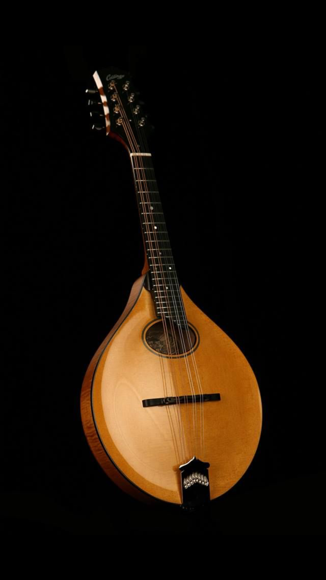 Mandolin picture